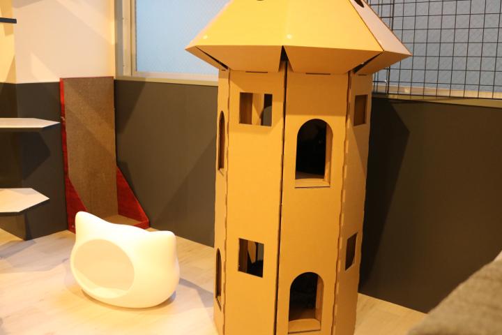 お城タイプの猫さんハウスには、1階、2階にそれぞれ猫さんがお住みでした | ネコリパブリック池袋店