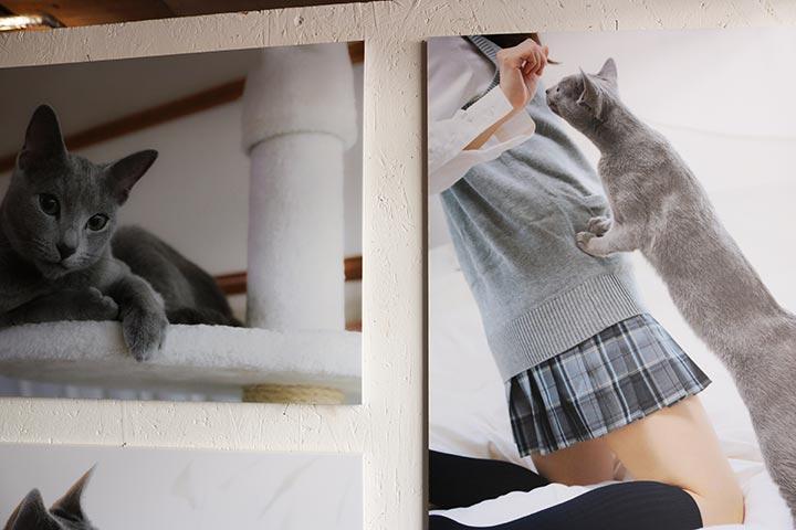 ゆりあさんは、様々な場所で作品の展示を行っています