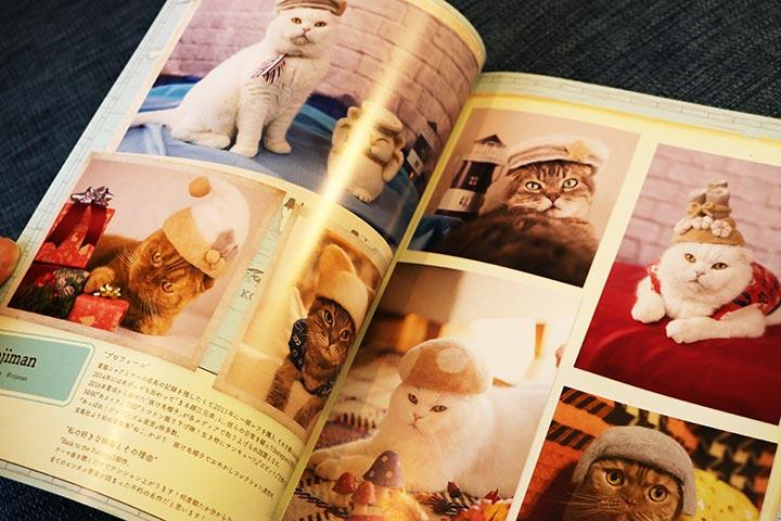 公式ガイドには展示されていた猫さんの写真がたくさん掲載されています