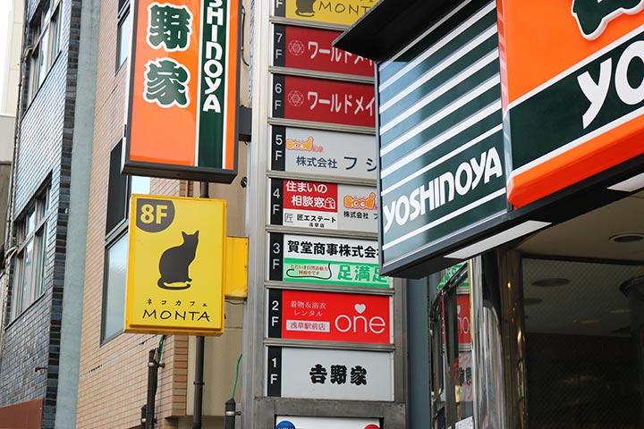 猫カフェMONTAは浅草駅から歩いてすぐのところに看板が出ています